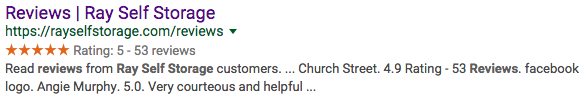 Ray Self Storage Reviews Search